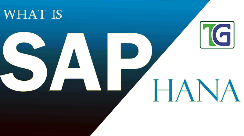 SAP HANA Next Generation Platform and Opportunities Ahead,what is sap hana,sap hana opportunities, SAP HANA Platform for Next Gen Applications,sap hana modules,sap hana features and benefits
